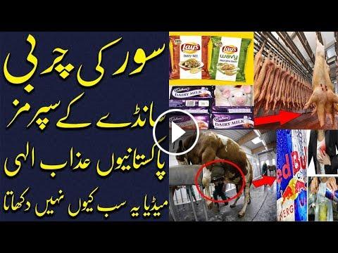 Urdu dex stories