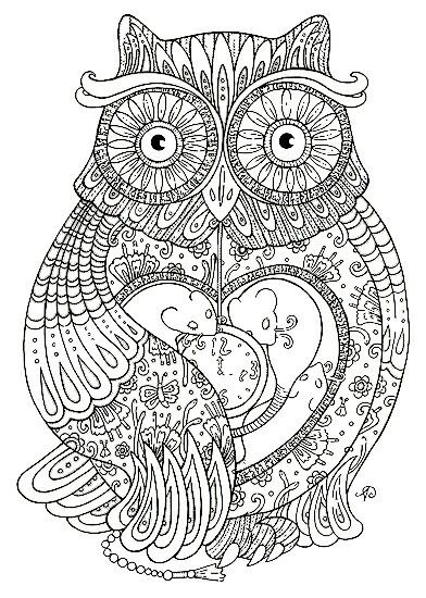 Zentangle Owl Colouring Coloring Page
