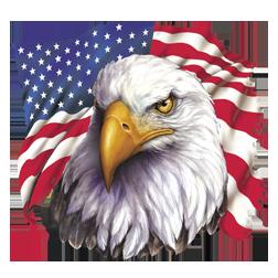 American Eagle Flag T Shirt Eagle Dad To Be Shirts Bald Eagle