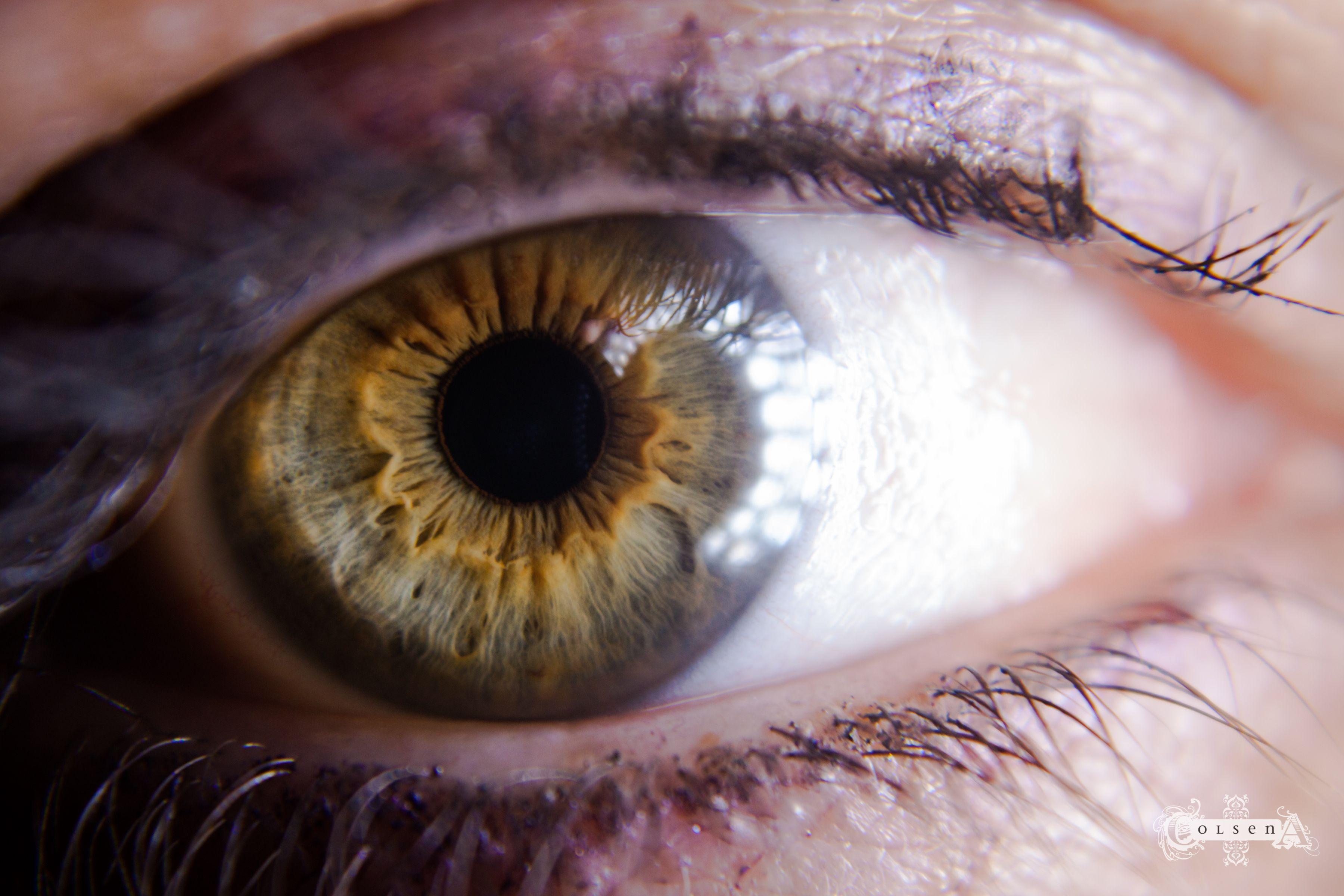 самые желтые глаза в мире фото уже один раз