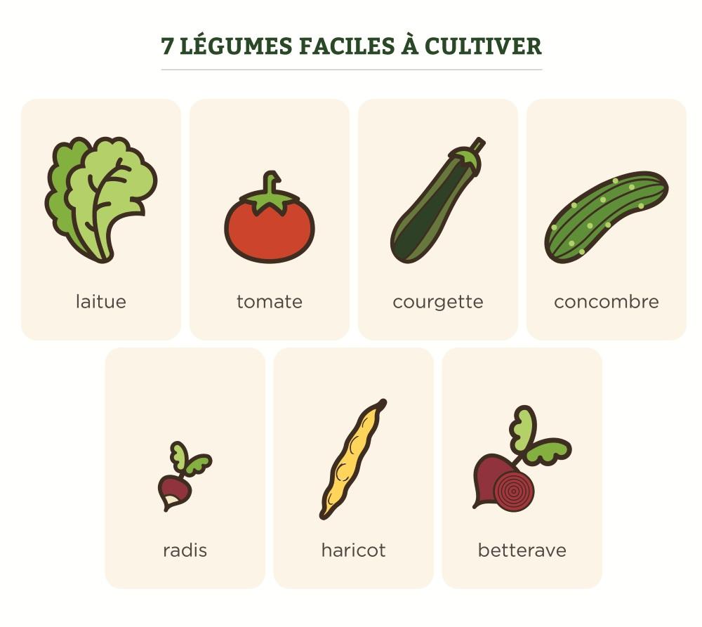 100 Génial Idées Legumes Facile A Faire Pousser