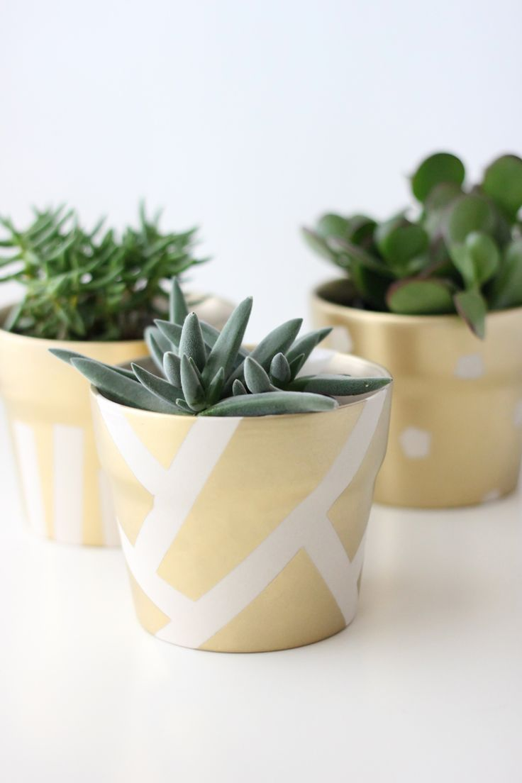 Gilded Succulent Pots  18 Amazing DIY Spring Home Decor Projects