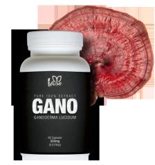 http://tlcportugal.wordpress.com/2014/01/12/cogumelos-medicinais-e-cancro/