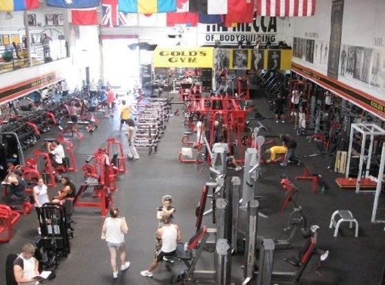 Golds gym venice beach. the mecca of bodybuilding. while it isnt