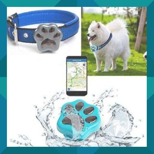 Rf V30 Smart Pet Gps Tracker Pet Gps Dog Gps Pet Emergency