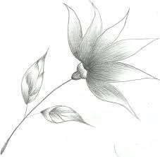 Image result for easy sketch ideas for beginners | Pencil ...