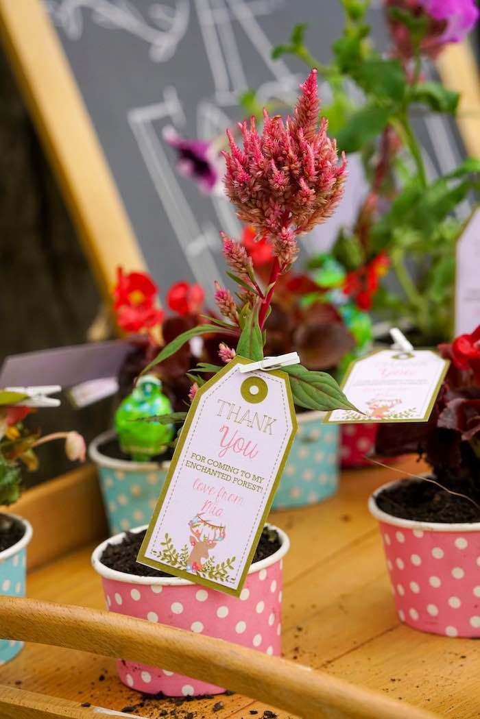 Plant Favors from a Boho Enchanted Forest Birthday Party via Kara's Party Ideas | KarasPartyIdeas.com (14)
