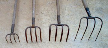 Bent Tine Forks Sod Lifter Two Deep Digging Strong Forks And A