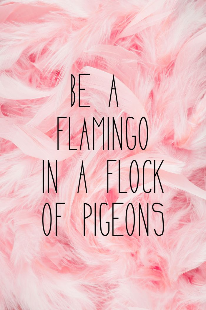 Be a flamingo ♥️ Art Print by Gabi Davis Society6 Pink