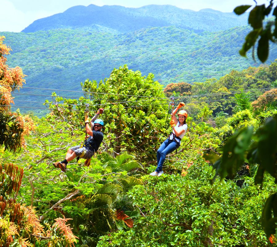 San Juan Canopy Zip Line Excursion in 2020 Cruise