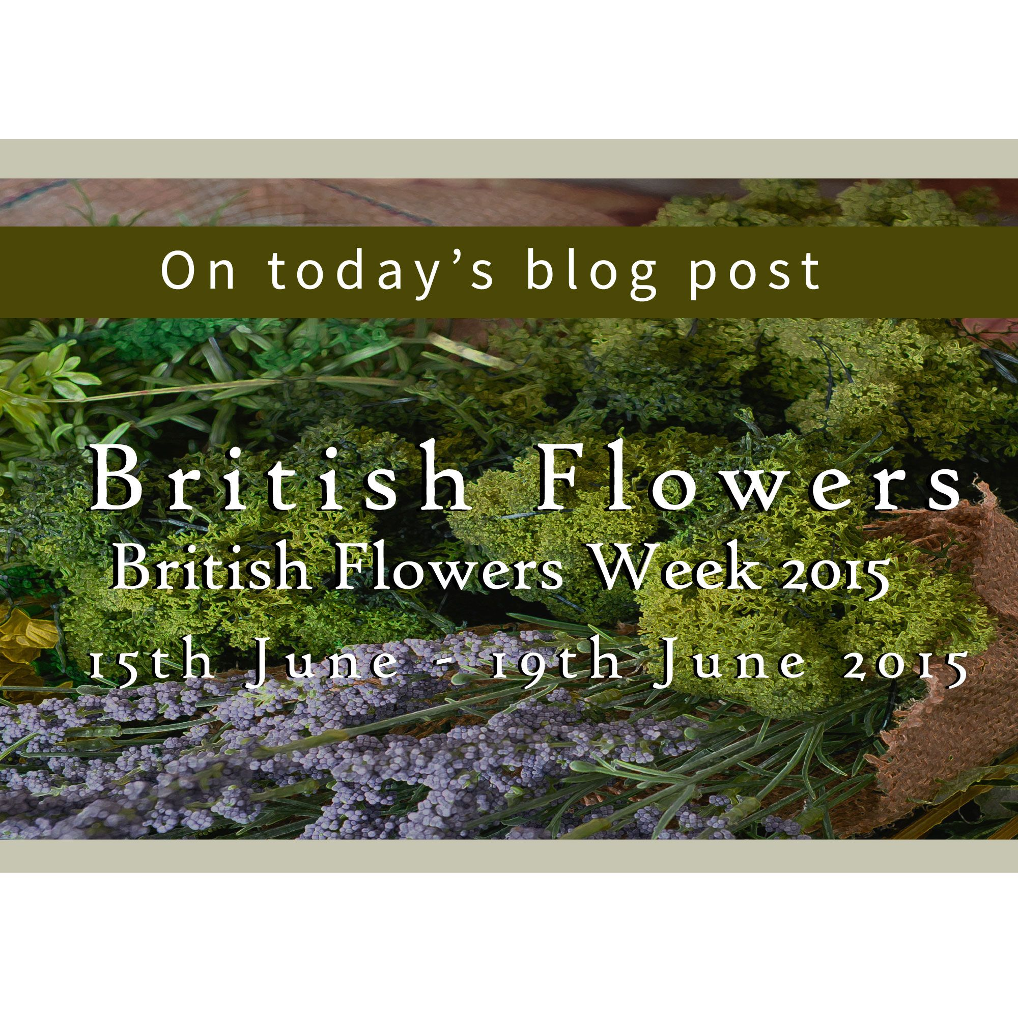 Beautiful British blooms - take a look at the Country Baskets blog for our favourite florals!  #British #flowers #BritishFlowersWeek  http://www.countrybaskets.co.uk/blog/2015/06/11/gb13-spotlight-on-british-flowers-for-british-flowers-week/