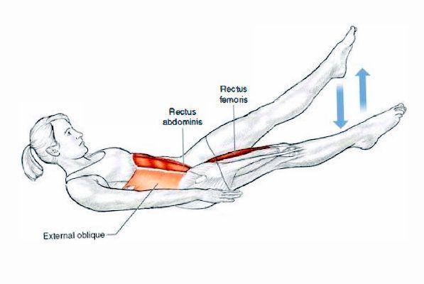 Flutter Kicks anatomy muscles   Gym Anatomy