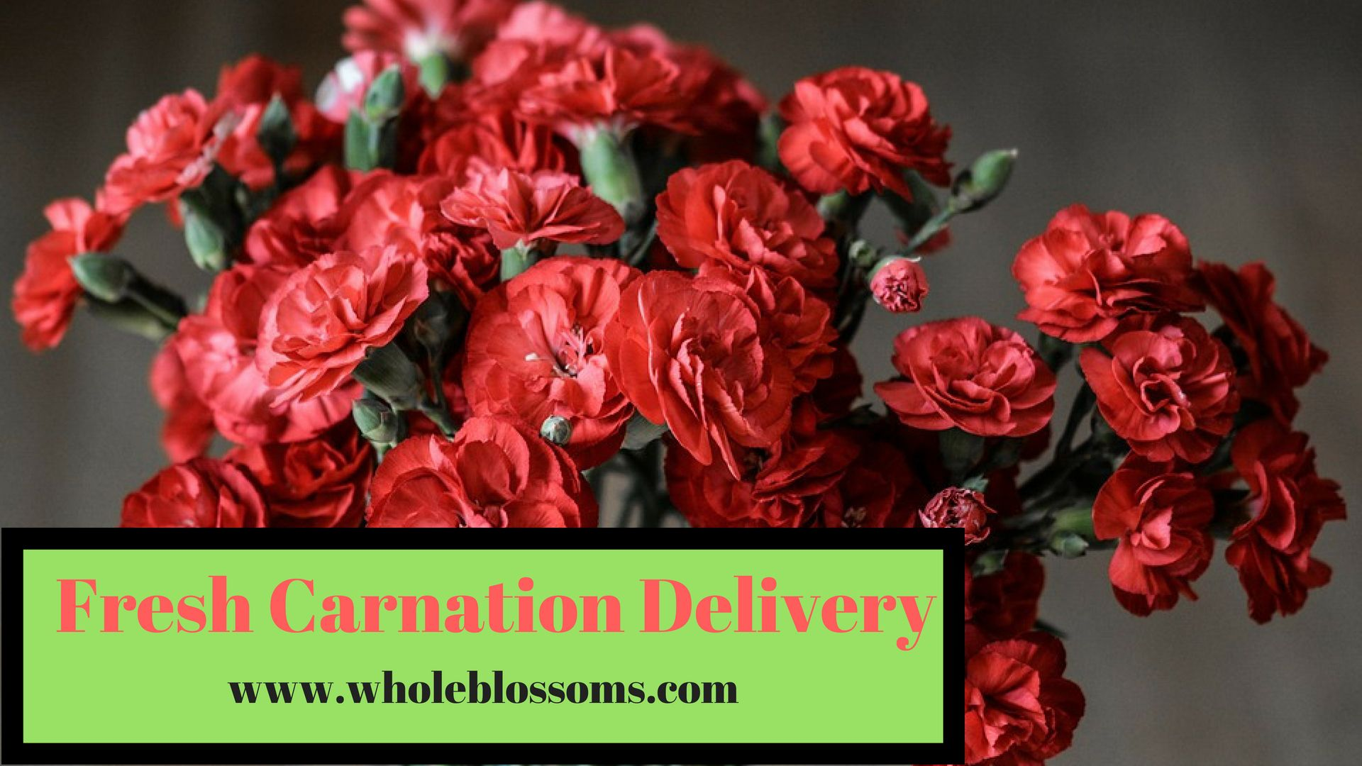 Carnations Express The Sentiment Of Love And Relation Carnation Are A Popular Choice For Flower Arrangement Flowers Home Improvement Home Improvement Projects