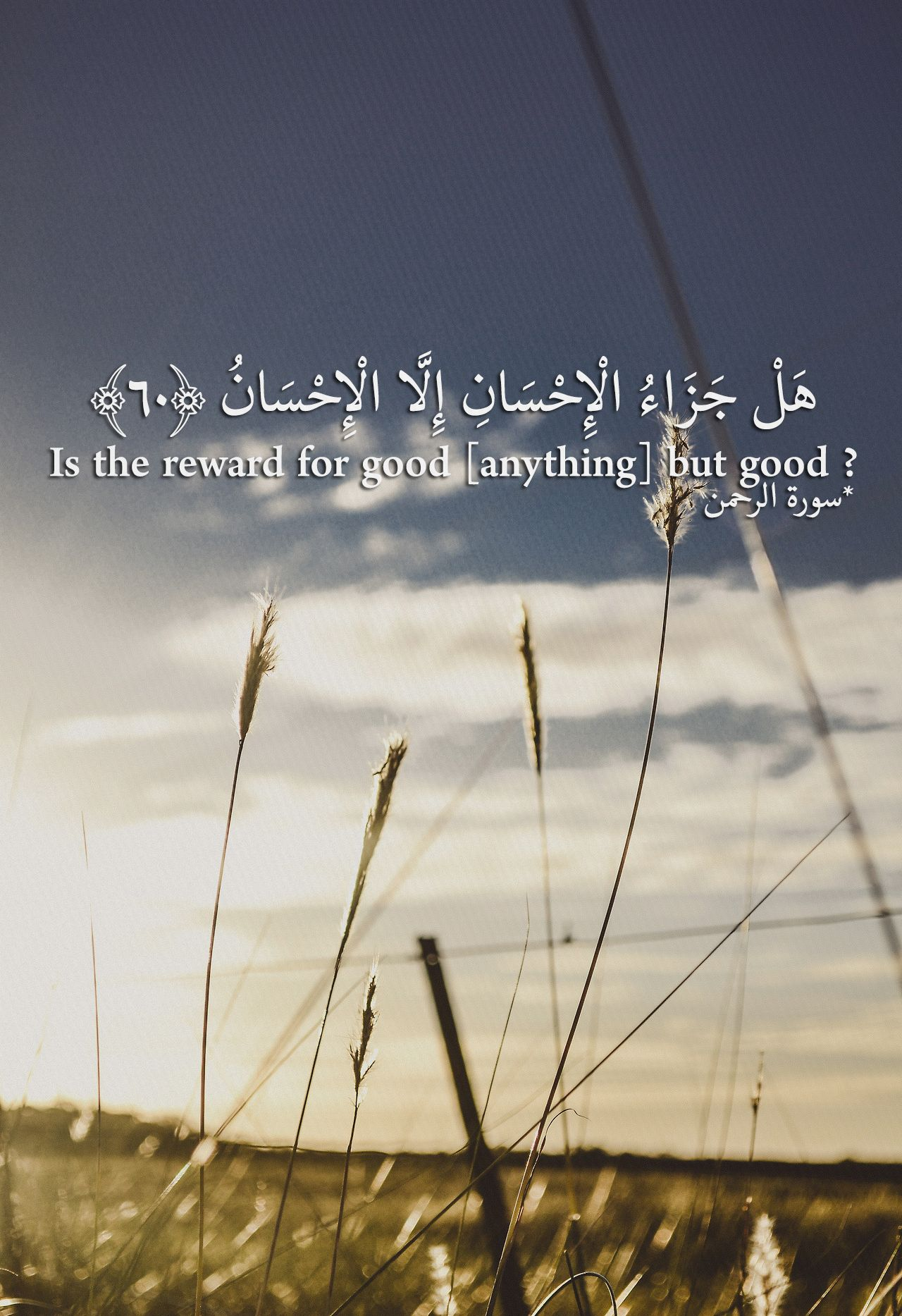 هل جزاء الإحسان إلا الإحسان Quran Quotes Quran Islamic Quotes