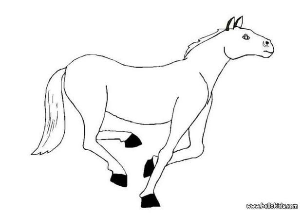 Horse Coloring Page Cute And Amazing Farm Animals For