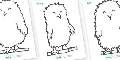 Owl Babies Colouring Sheets Super Cute Baby Owls Owl