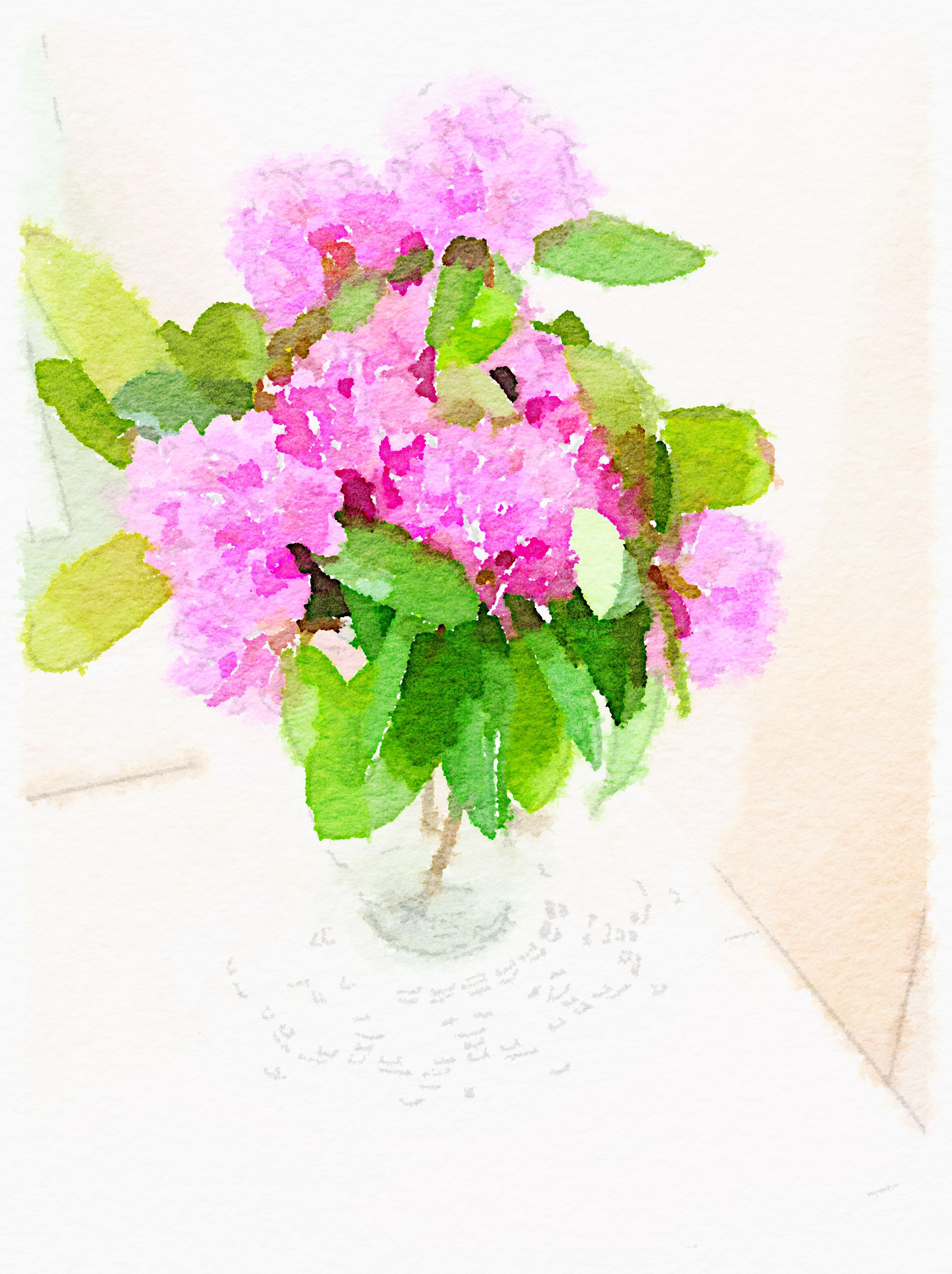Rhododendron in Vase | Hydrangea | Watercolor, Watercolor paintings on flower wreath painting, bird-and-flower painting, flower bowl painting, flower box painting, flower butterfly painting, bottle flower painting, flower oil paintings christmas, flower bed painting, flower table painting, candle painting, flower girl painting, flower white painting, frame painting, flower light painting, modern palette knife painting, flower mirror painting, flower vases with flowers, flower still life oil paintings, flower window painting, flower stand painting,