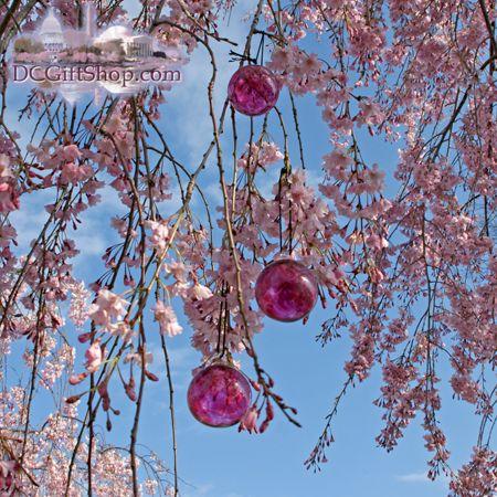 Cherry Blossom Glass Balls Cherry Blossom Cherry Blossom Festival Blossom