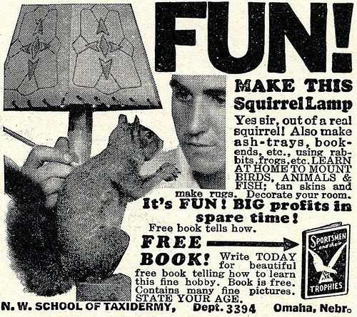 """FUN! Make this squirrel lamp. Yes sir, out of a real squirrel!"""
