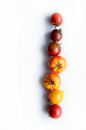 In the past decade there's been an explosion of more than 4000 varieties of tomatoes in different colours, flavours and shapes, and now a delicious new variety is available..