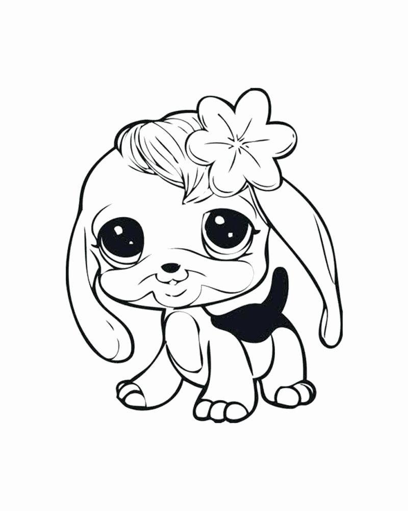 Little Miss Pet Shop Coloring Pages Halaman Mewarnai Buku Mewarnai Littlest Pet Shop [ 1000 x 800 Pixel ]