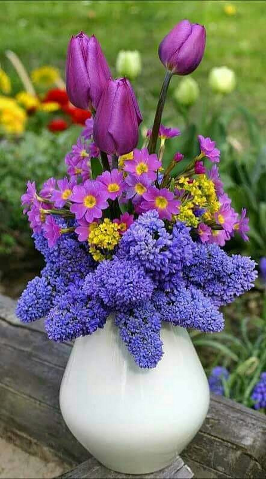 صور ورود رومانسية للاهداء رومانسية صور للاهداء ورود In 2020 Beautiful Flowers Pretty Flowers Tulips Flowers