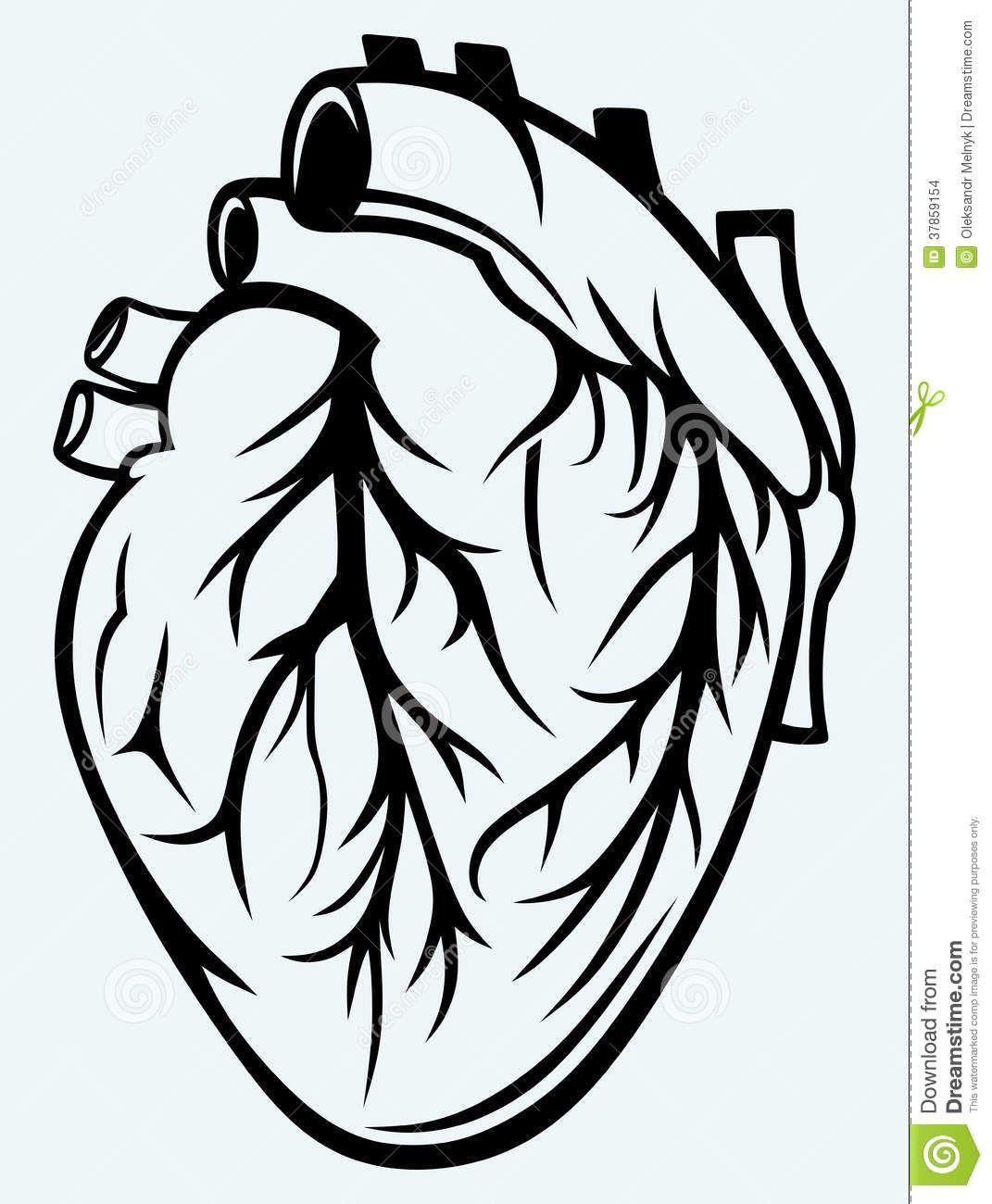 corazon humano plantilla | Halloween stencils en 2018 | Pinterest ...