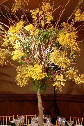 Centro de mesa (árvore de chuva-de-ouro)