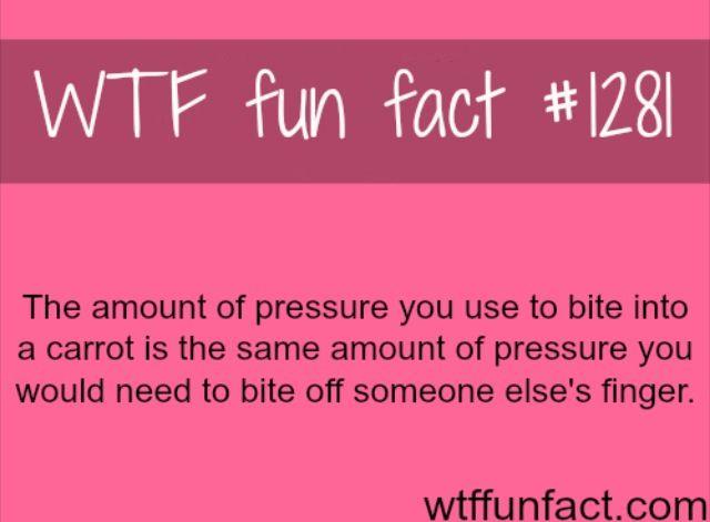 Wtf fun fact #1281