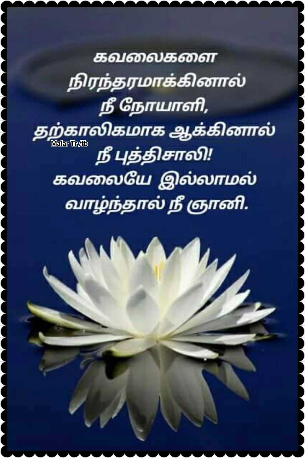 Pin By Malar Tr On Quotes In Tamil Buddha Quote Quotes Strong