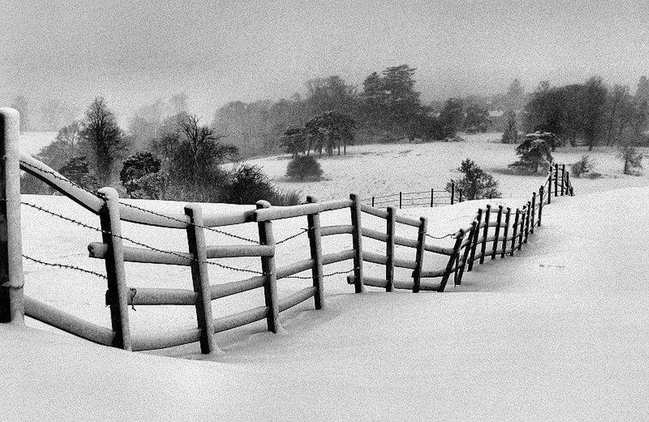 Black White Winter Scene Wallpaper
