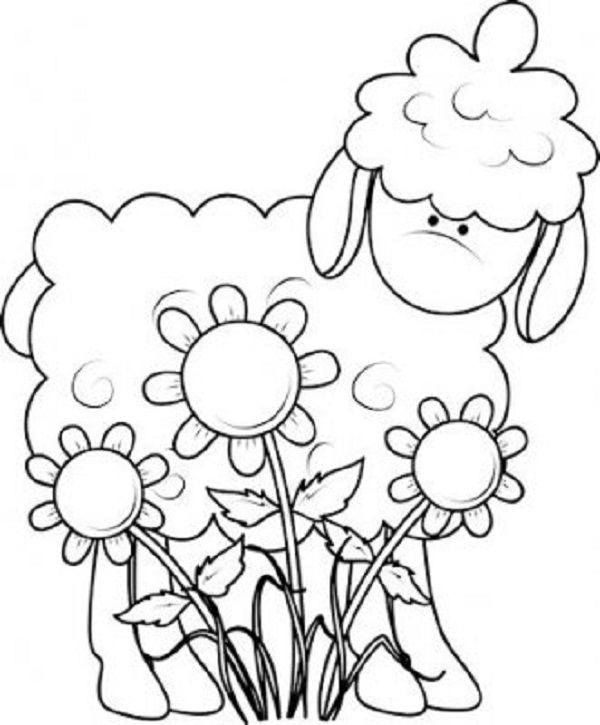 Baa Baa Black Sheep Printable Cartoon Coloring Pages Cartoon