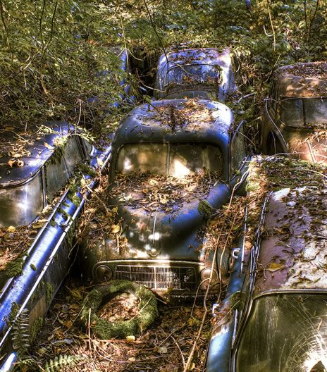 The End Of The Road For Switzerland S Vintage Car Graveyard Coches Abandonados Abandono Vehiculos