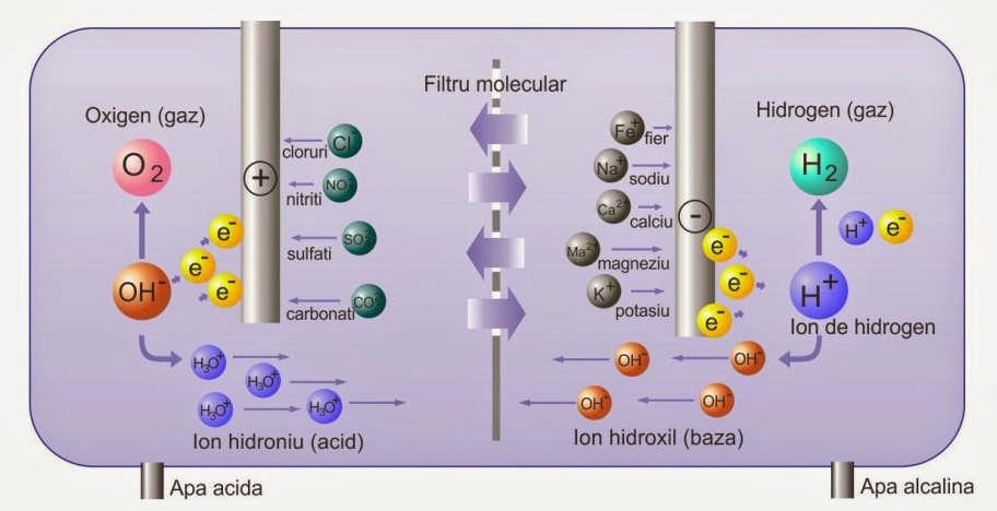 ce este o apa alcalina parazitii fii pregatit