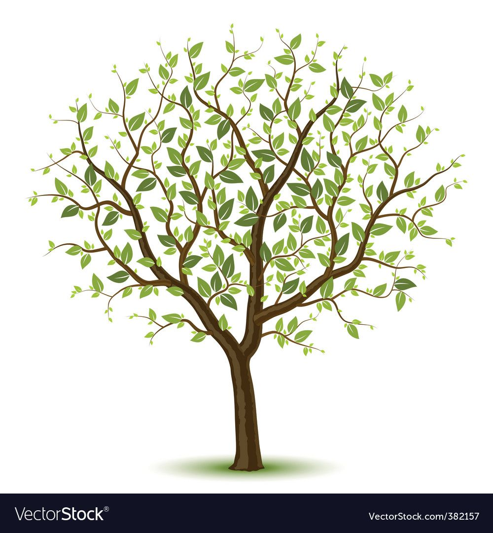 33++ Tree images clip art free information