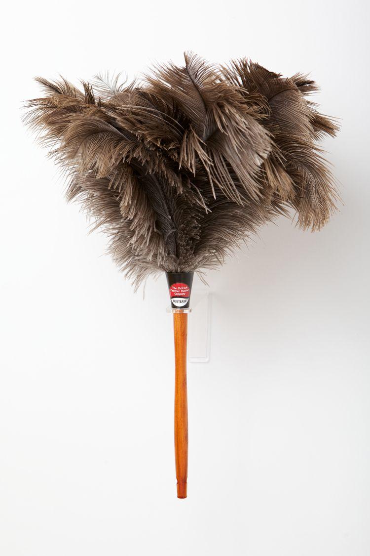 Ostrich Feather Dusters Ostrich Feather Duster Company