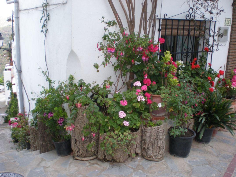 Benalauría, Málaga, Andalucía