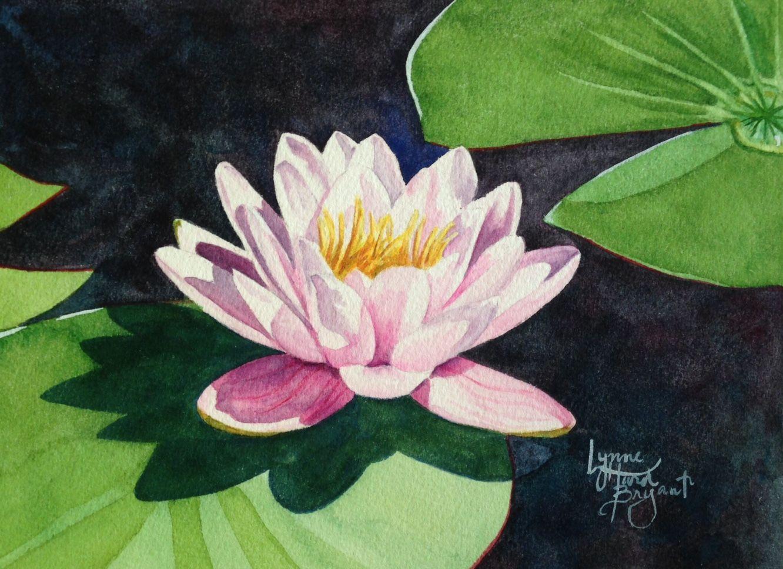 Untitled Water Lily Painting 6 X 8 Watercolor Www Lynnehurdbryant