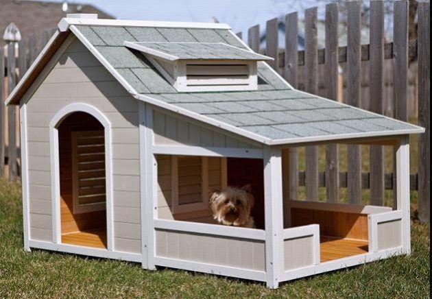 Photo of 10 diseños simples pero hermosos de casas para perros de bricolaje que puedes hacer fácilmente
