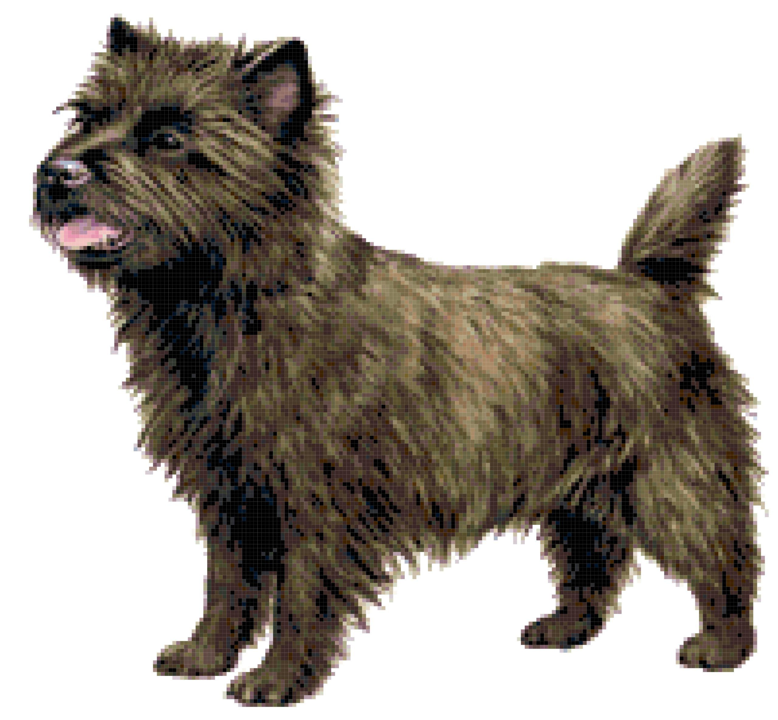 Cairn Terrier Dog Counted Cross Stitch Pattern Stitch Count 200w