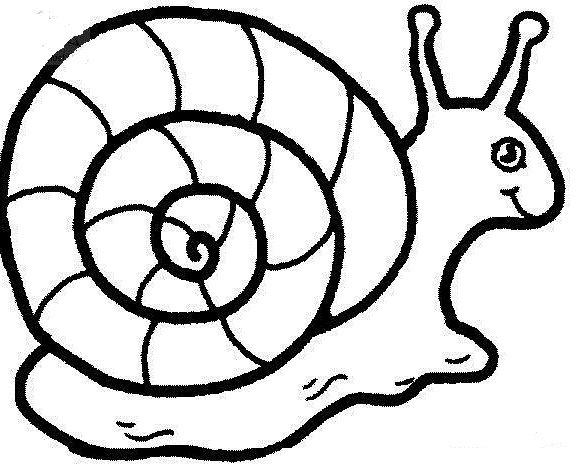 Creeping Snail With Casual Snails Pinterest Kids net Snail