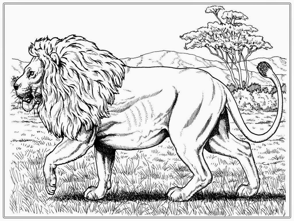 Lion Coloring Pages Printable http://procoloring.com/lion-coloring ...