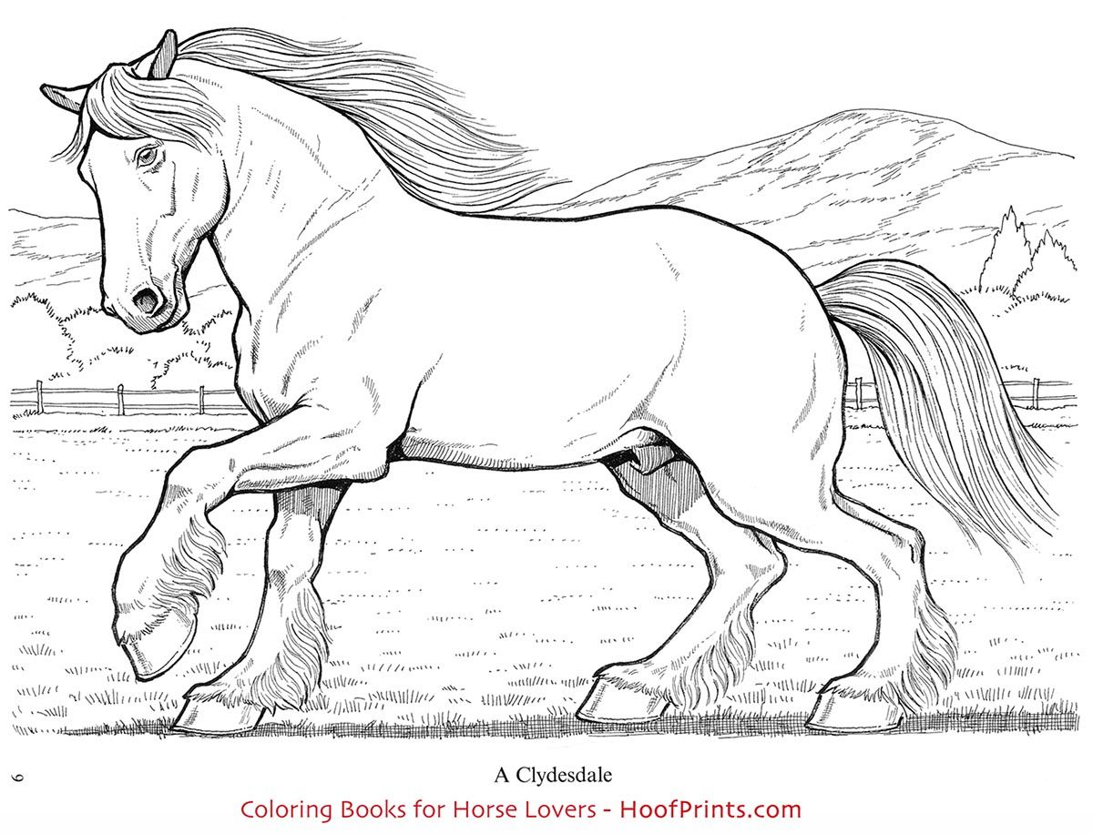 Pin on HoofPrints Coloring Books for Horse Lovers