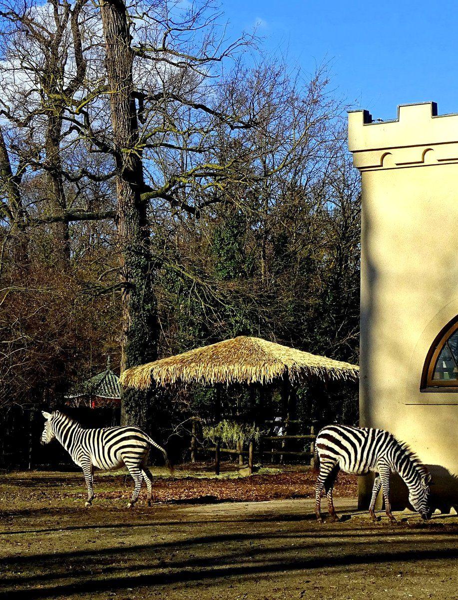 Zoo Zagreb Croatia Zagreb Croatia Croatia Travel Zagreb