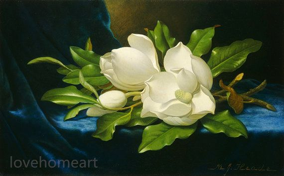 Museum Quality Handpainted Famous Oil Painting Reproduction Martin Johnson Heade Giant Magnolias Floral Wall Art Canvases Flower Painting Martin Johnson Heade
