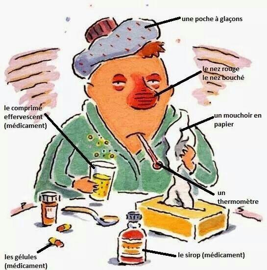 Maladies La Grippe Lexique Fle Dolor De Garganta Gripe