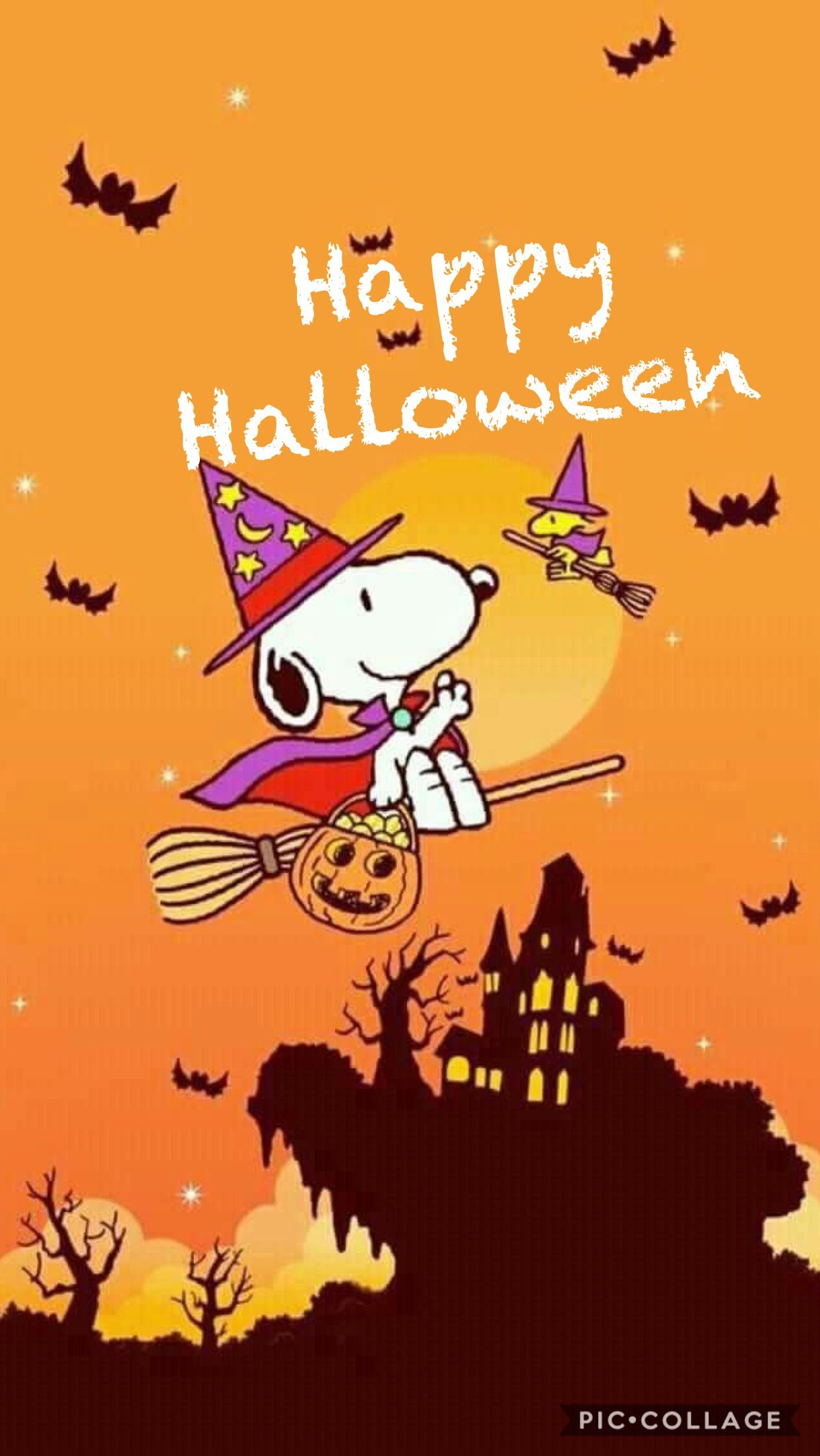 Pin By 美桜 坂田 On Quotes Snoopy Halloween Halloween Wallpaper Halloween Cartoons