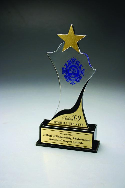 Pin by GitanjaliAwards Pvt  Ltd  on Star Trophies | Star