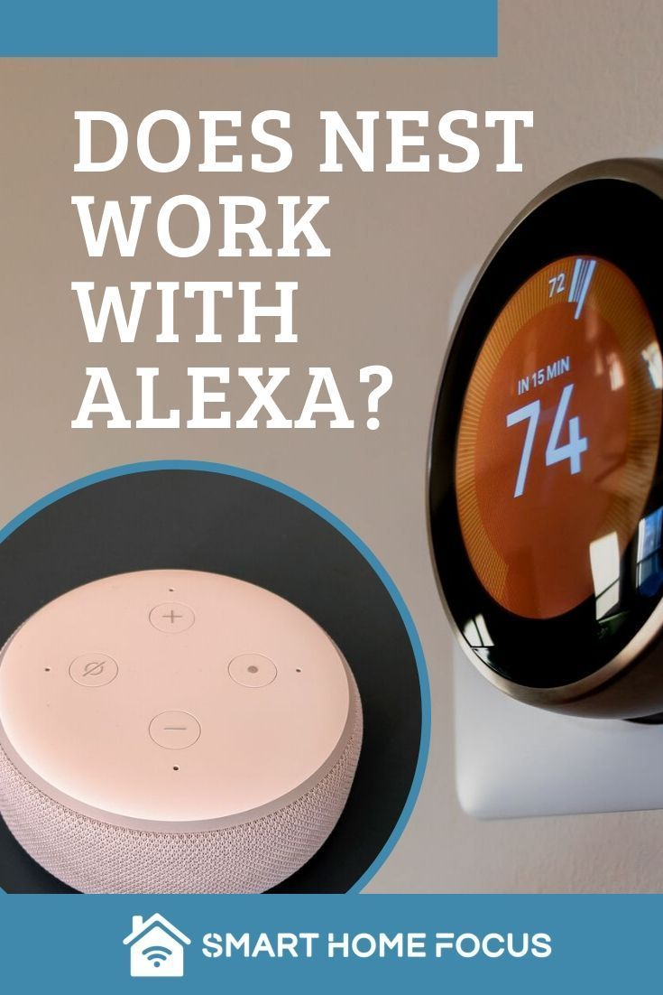 Does Nest work with Alexa? Which devices Nest, Smart