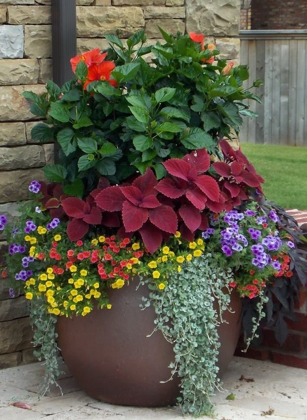 Outdoor Flower Pots Large Outdoor Planters Large Garden Pots Potted Plants Patio & Pin by Jo McGilbra on Flower Container Gardens | Pinterest ...